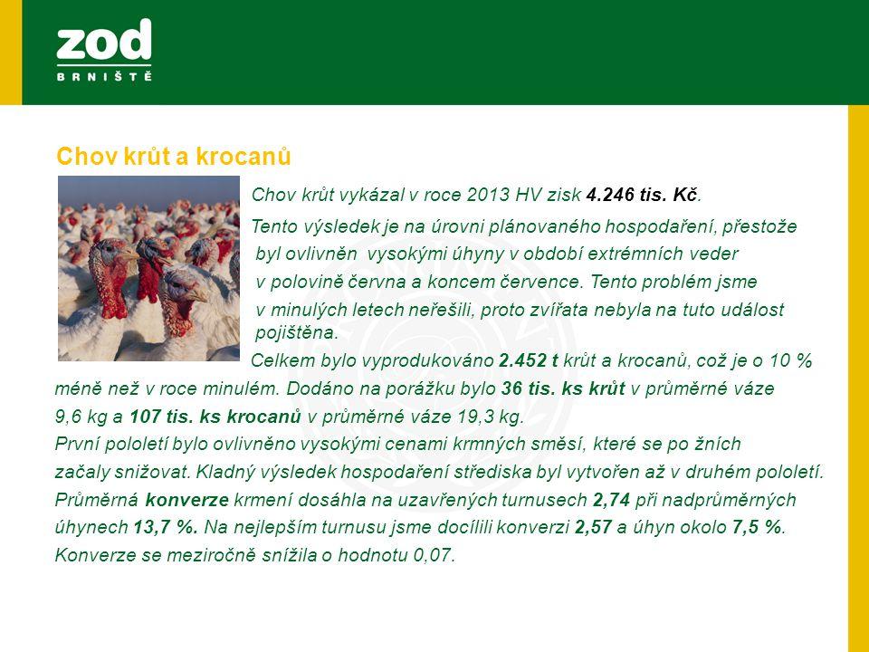 Chov krůt vykázal v roce 2013 HV zisk 4.246 tis. Kč.
