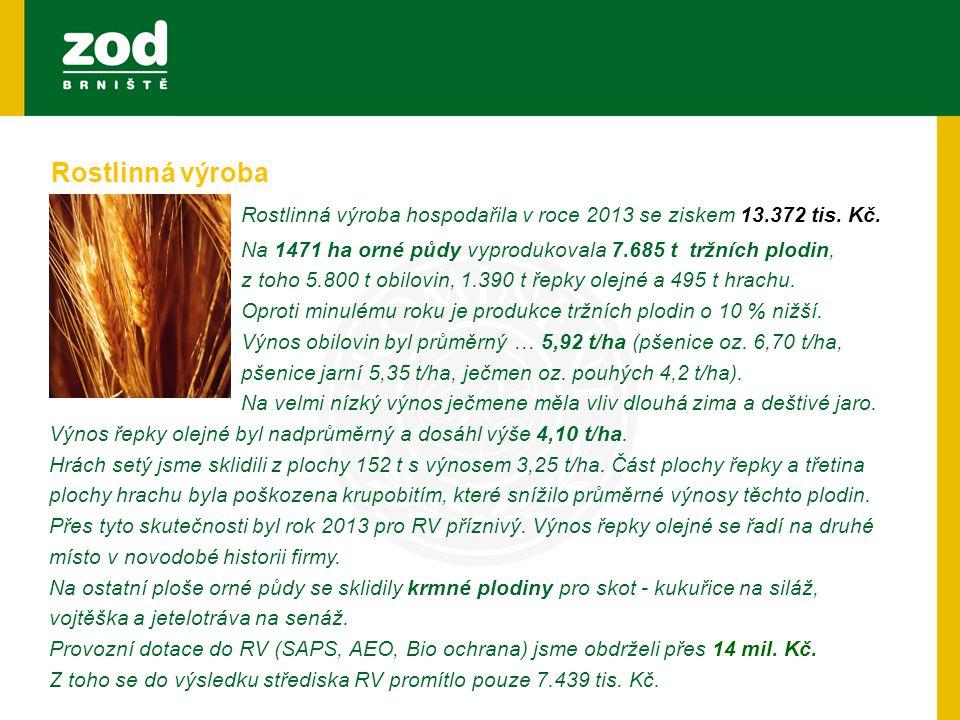 Rostlinná výroba hospodařila v roce 2013 se ziskem 13.372 tis. Kč.
