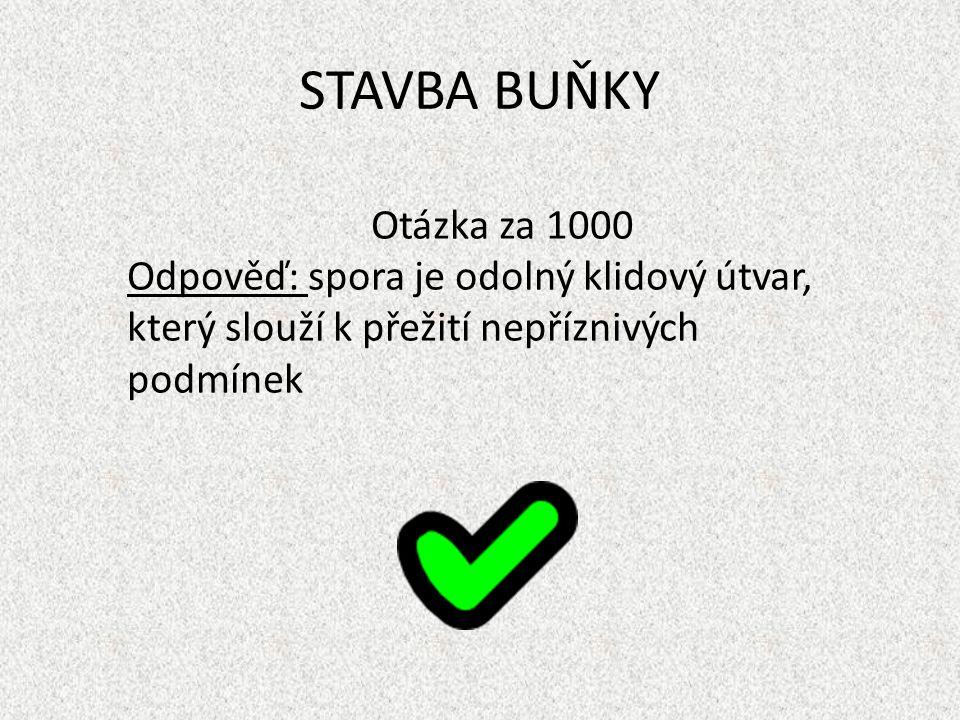 STAVBA BUŇKY Otázka za 1000.