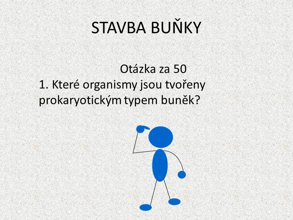 STAVBA BUŇKY Otázka za 50 Které organismy jsou tvořeny prokaryotickým typem buněk