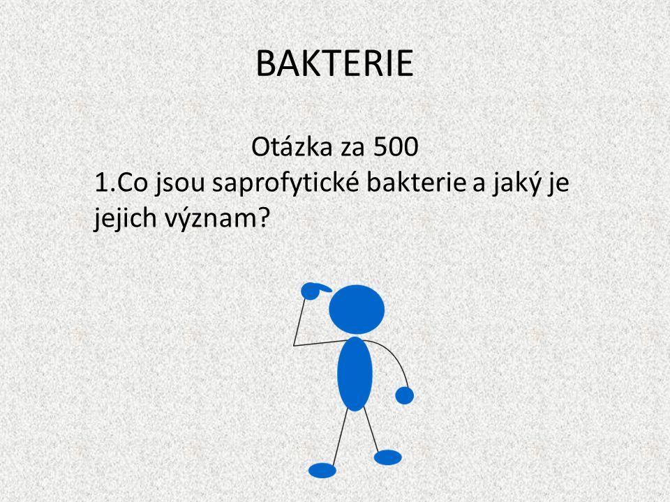 BAKTERIE Otázka za 500 Co jsou saprofytické bakterie a jaký je jejich význam