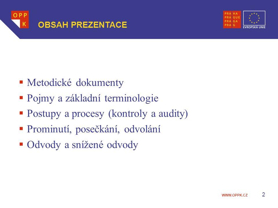Pojmy a základní terminologie Postupy a procesy (kontroly a audity)