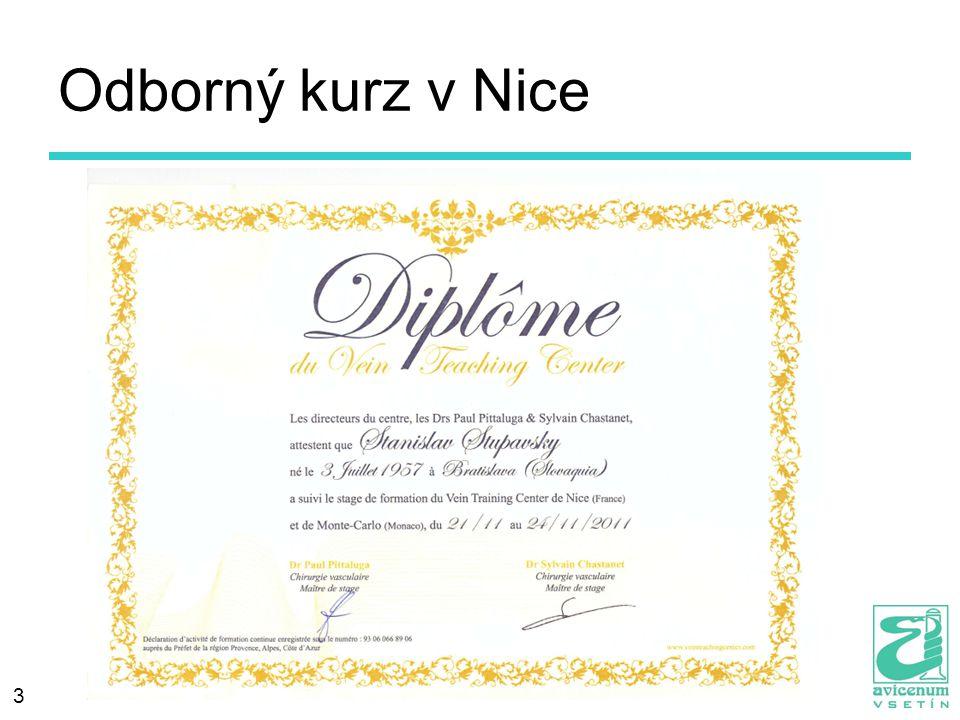 Odborný kurz v Nice 3