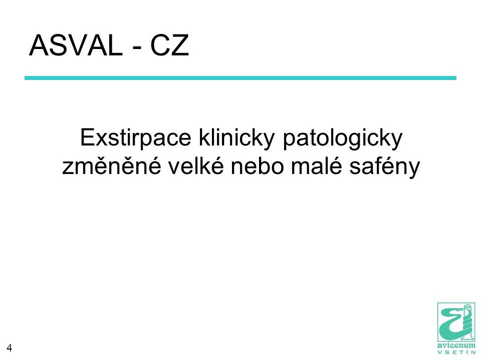 Exstirpace klinicky patologicky změněné velké nebo malé safény