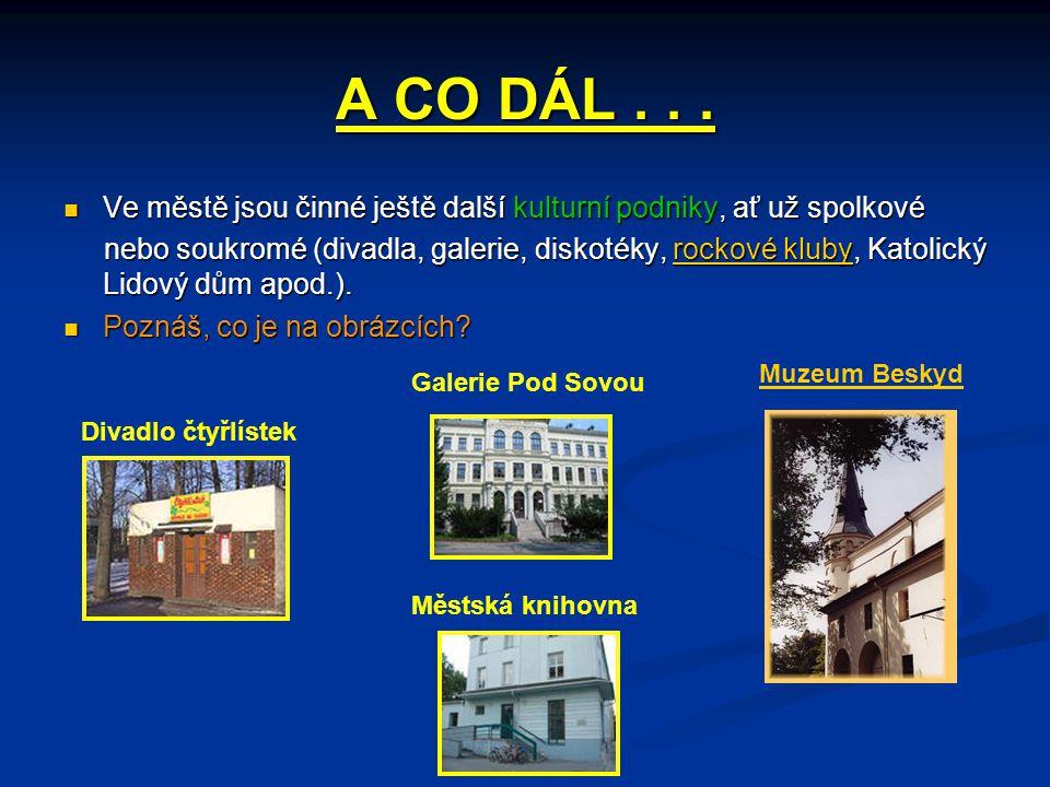 A CO DÁL . . . Ve městě jsou činné ještě další kulturní podniky, ať už spolkové.