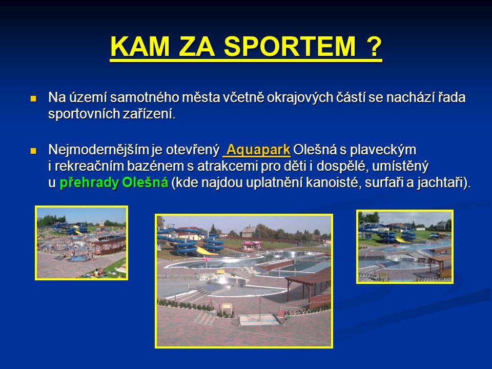 KAM ZA SPORTEM Na území samotného města včetně okrajových částí se nachází řada sportovních zařízení.