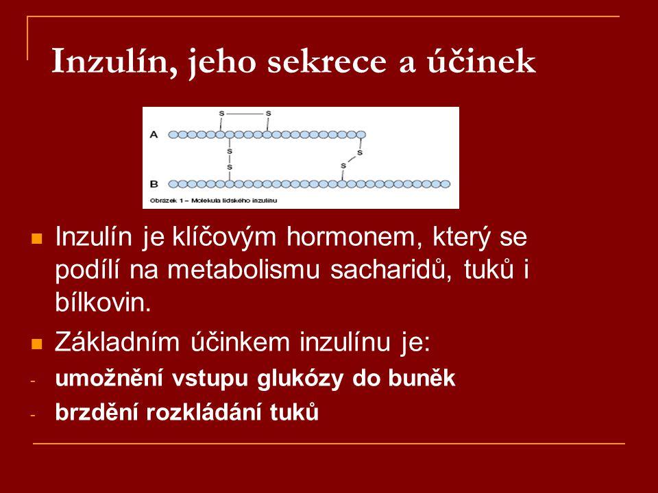 Inzulín, jeho sekrece a účinek