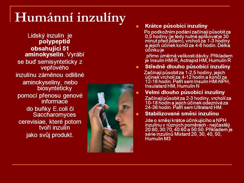 Humánní inzulíny Lidský inzulín je polypeptid