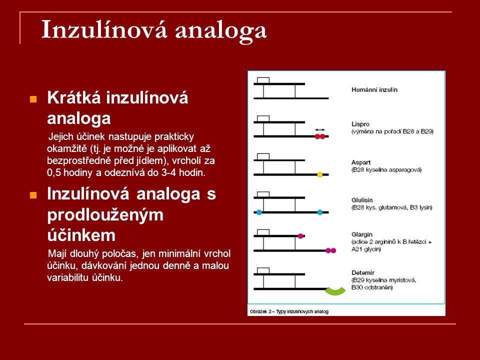 Inzulínová analoga Krátká inzulínová analoga
