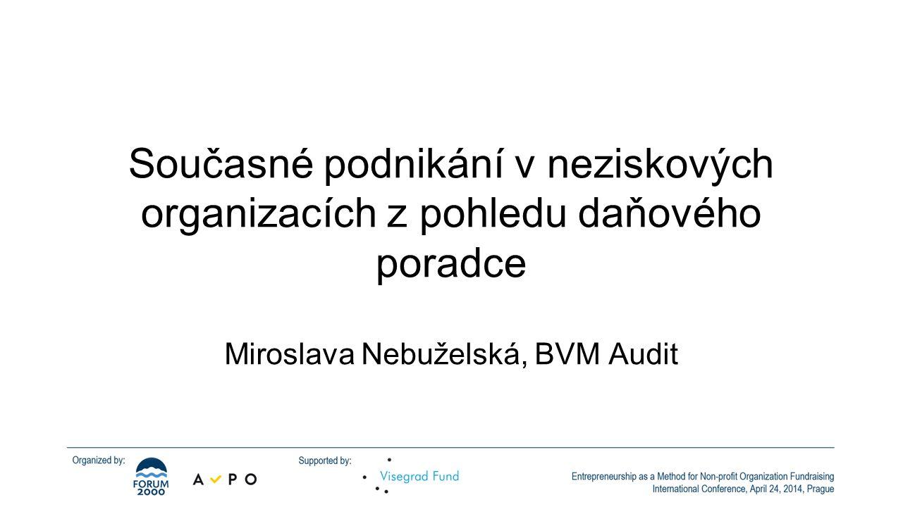 Miroslava Nebuželská, BVM Audit