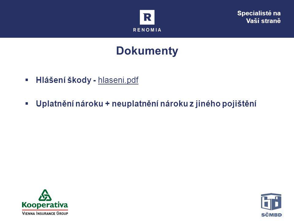 Dokumenty Hlášení škody - hlaseni.pdf