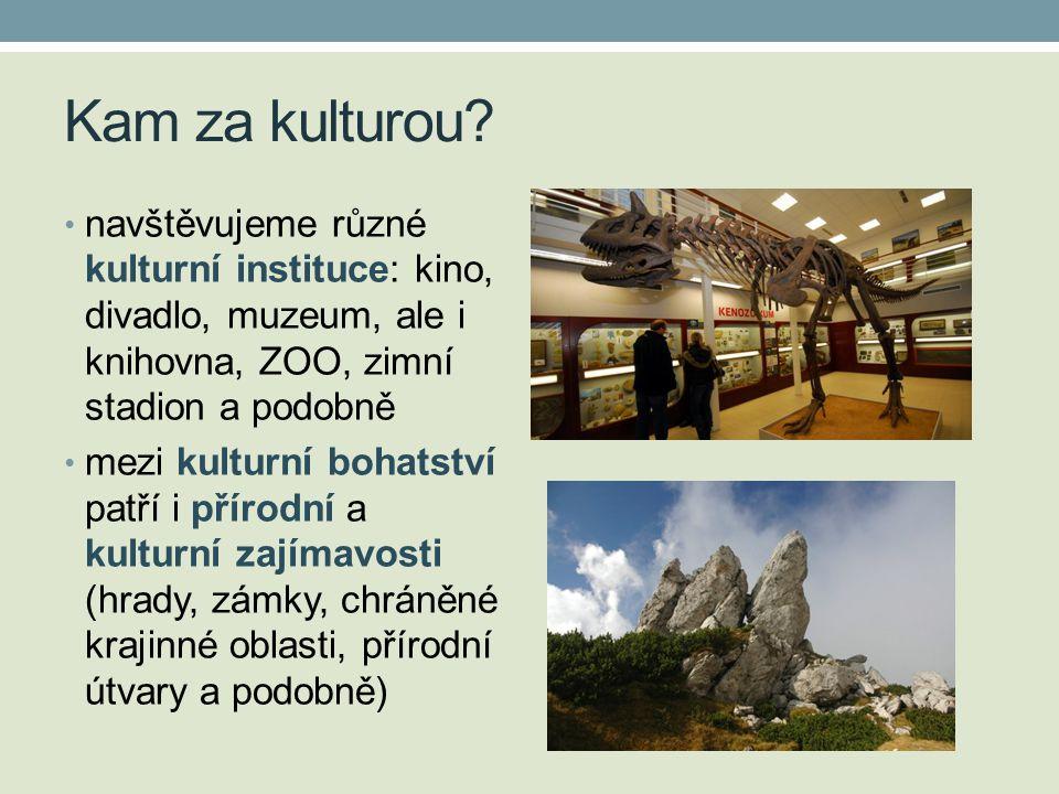 Kam za kulturou navštěvujeme různé kulturní instituce: kino, divadlo, muzeum, ale i knihovna, ZOO, zimní stadion a podobně.