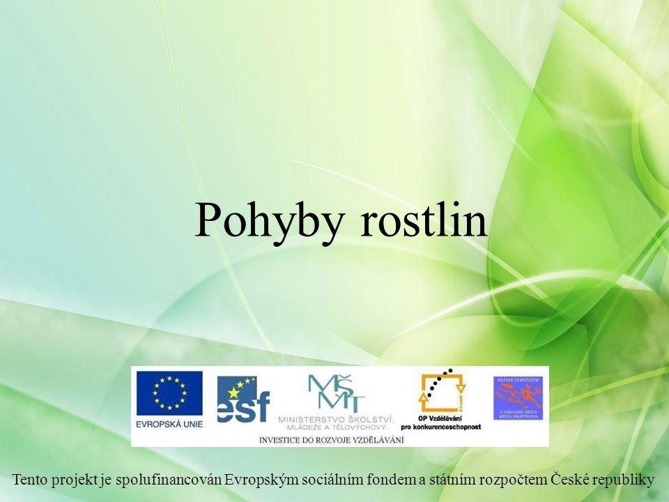 Pohyby rostlin Tento projekt je spolufinancován Evropským sociálním fondem a státním rozpočtem České republiky.