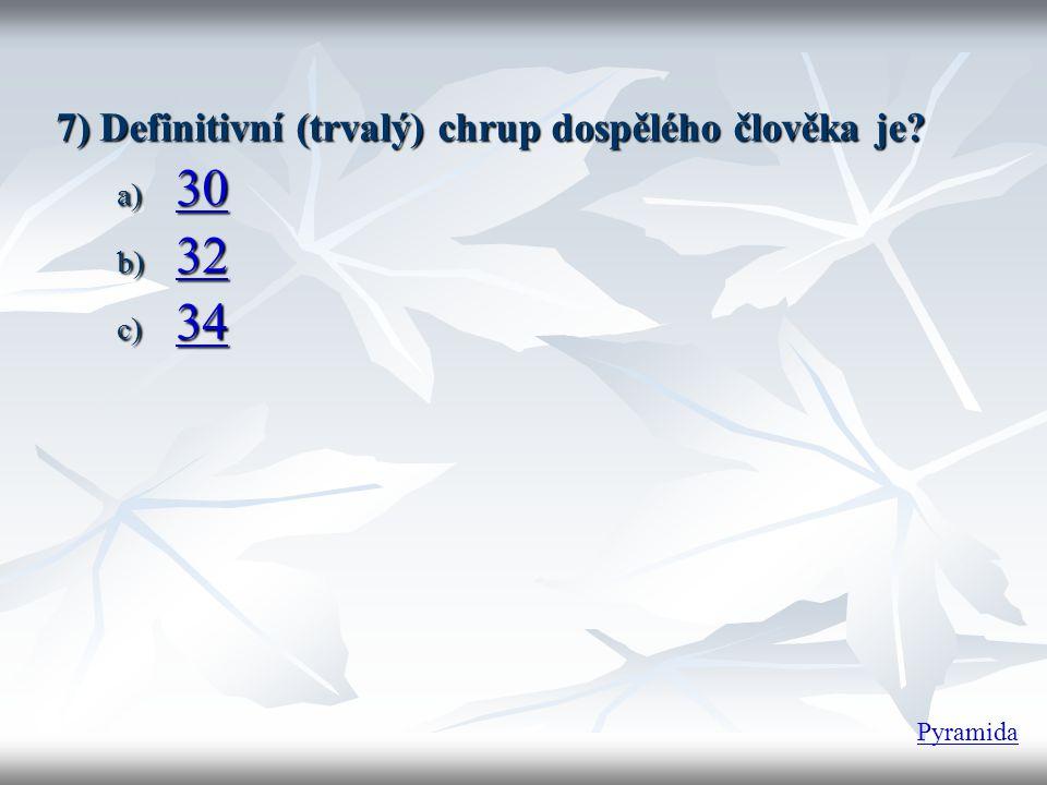 7) Definitivní (trvalý) chrup dospělého člověka je