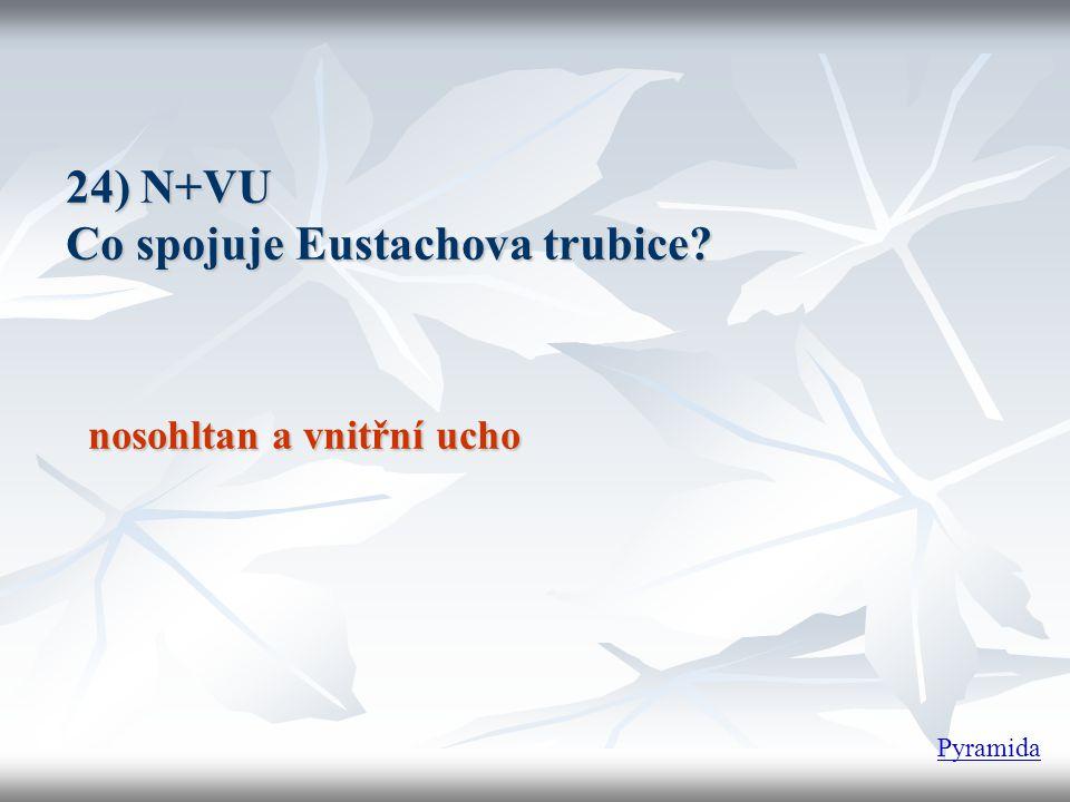 24) N+VU Co spojuje Eustachova trubice