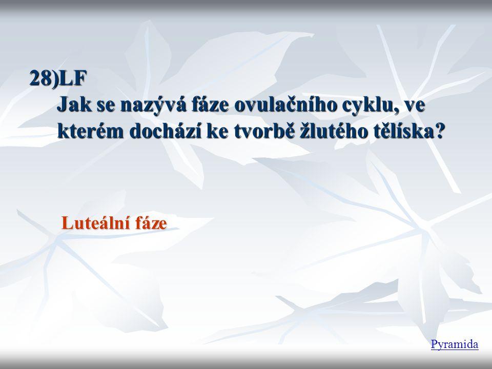 LF Jak se nazývá fáze ovulačního cyklu, ve kterém dochází ke tvorbě žlutého tělíska Luteální fáze.