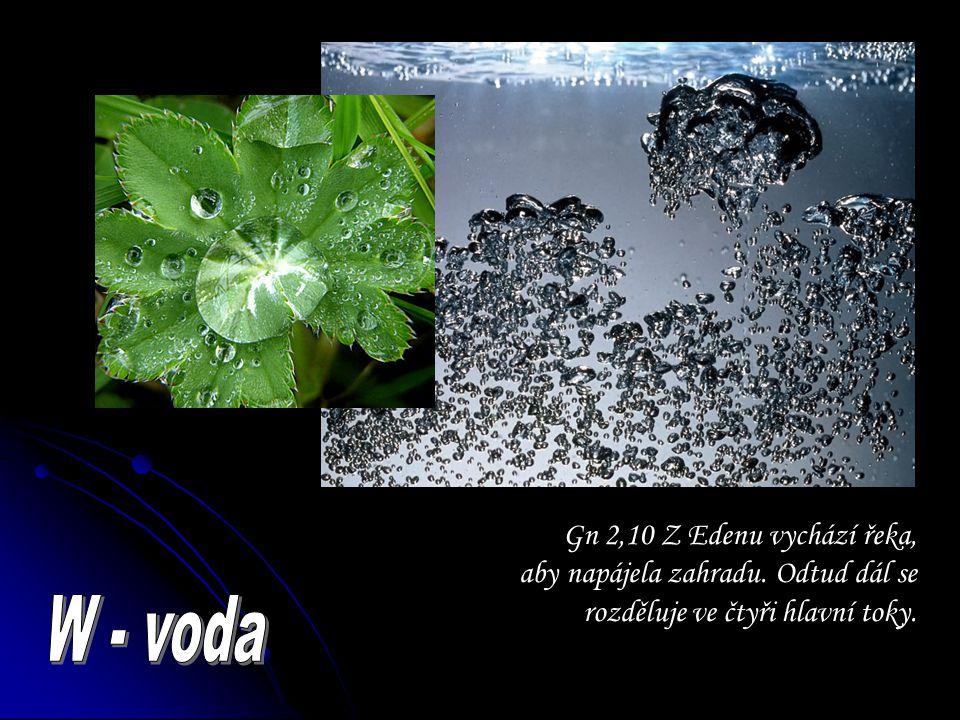 Gn 2,10 Z Edenu vychází řeka, aby napájela zahradu