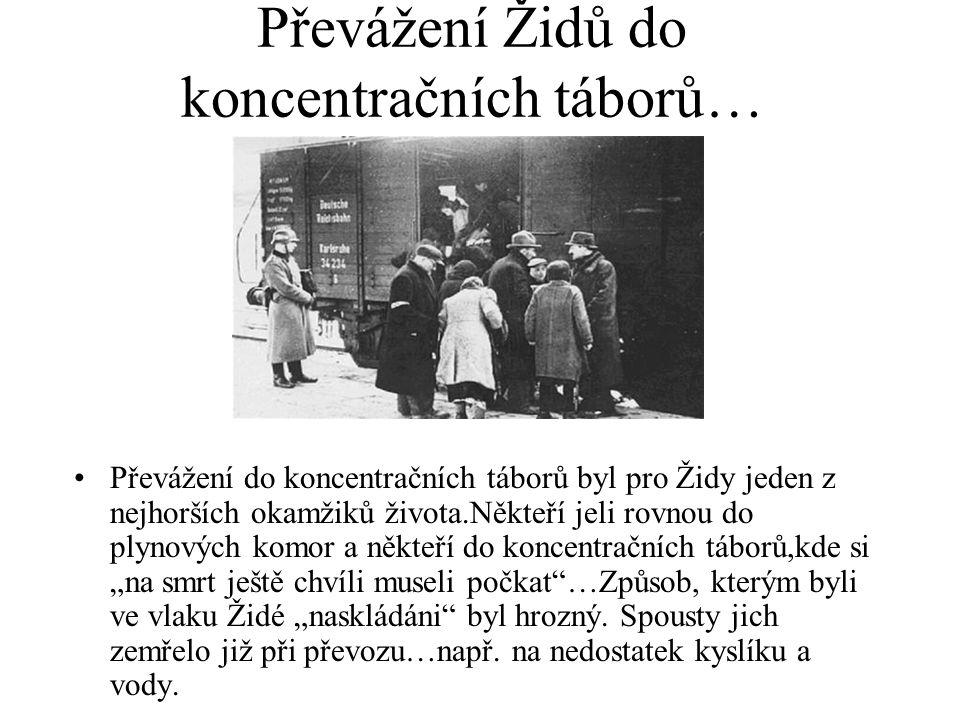 Převážení Židů do koncentračních táborů…