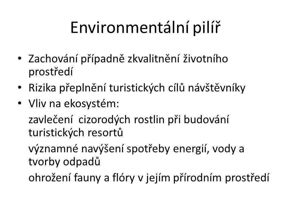 Environmentální pilíř