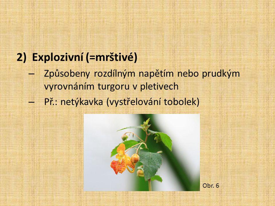 Explozivní (=mrštivé)