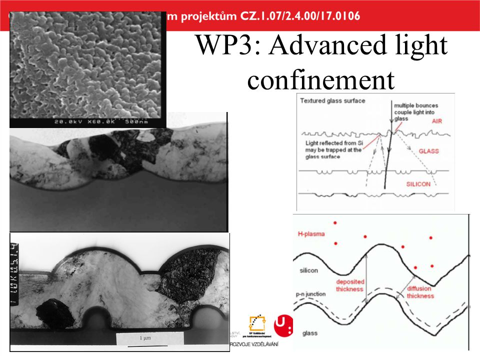 WP3: Advanced light confinement
