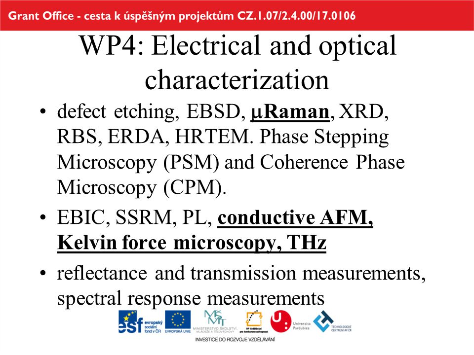 WP4: Electrical and optical characterization