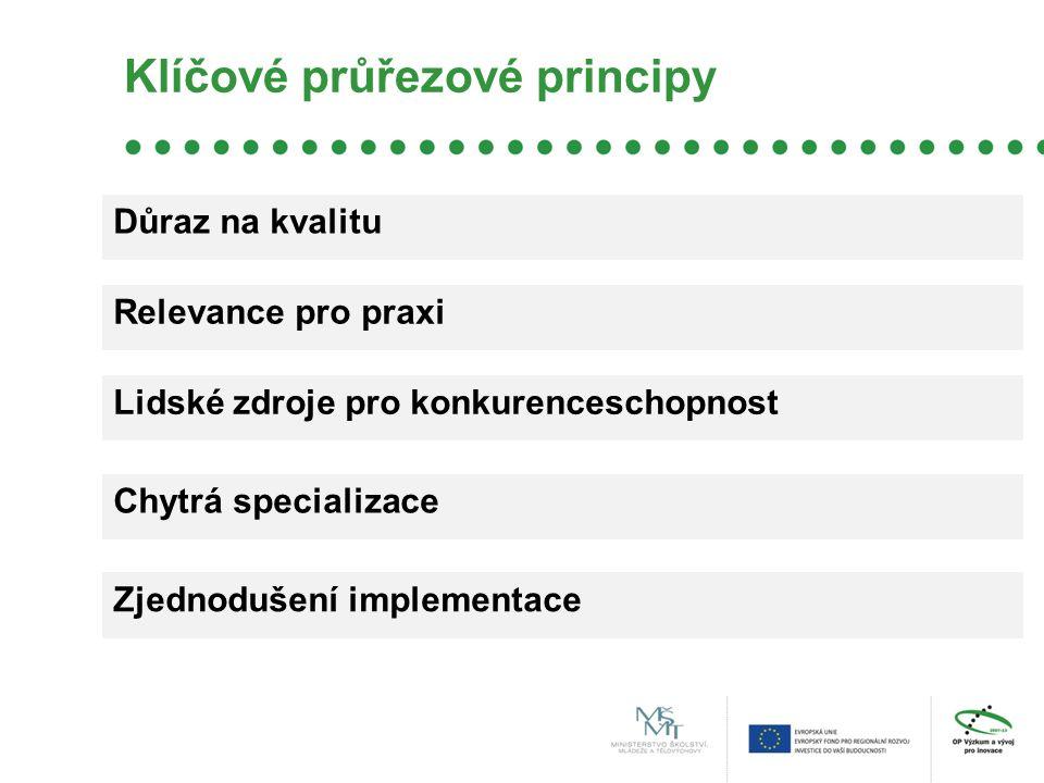 Klíčové průřezové principy