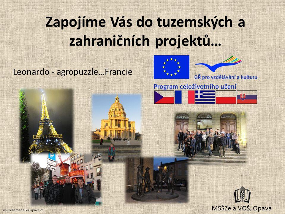 Zapojíme Vás do tuzemských a zahraničních projektů…
