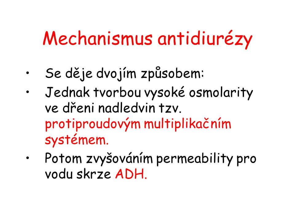 Mechanismus antidiurézy