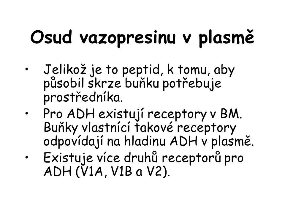 Osud vazopresinu v plasmě