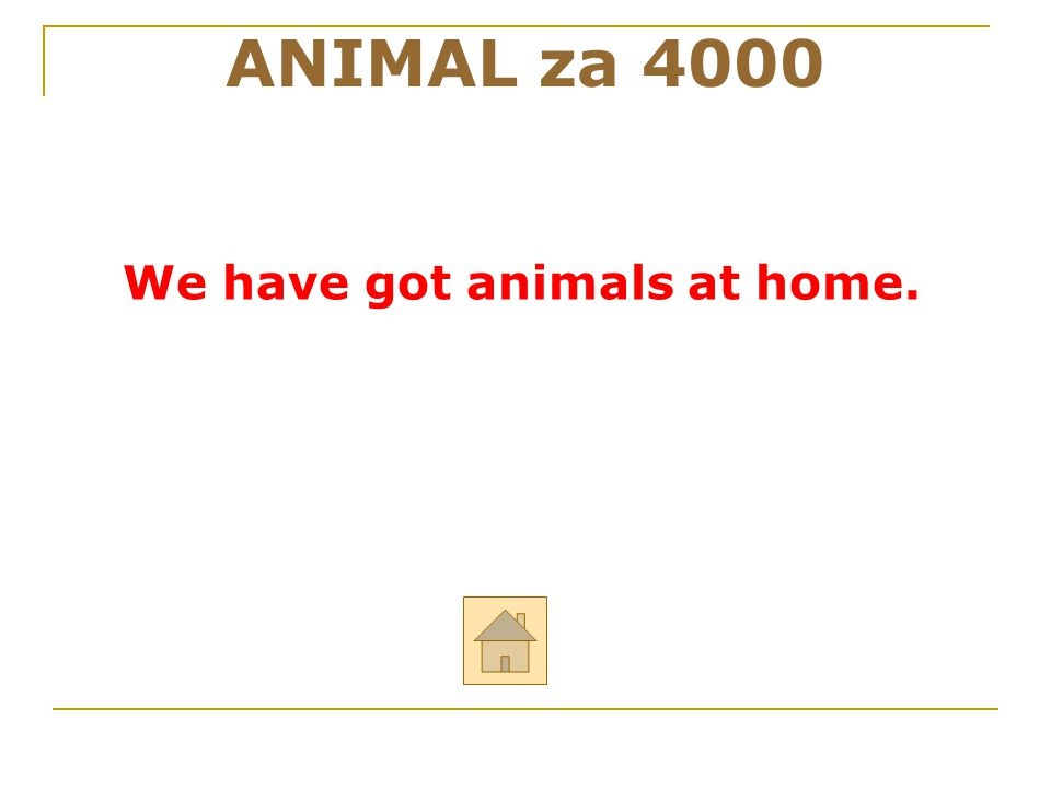 ANIMAL za 4000 We have got animals at home. 30