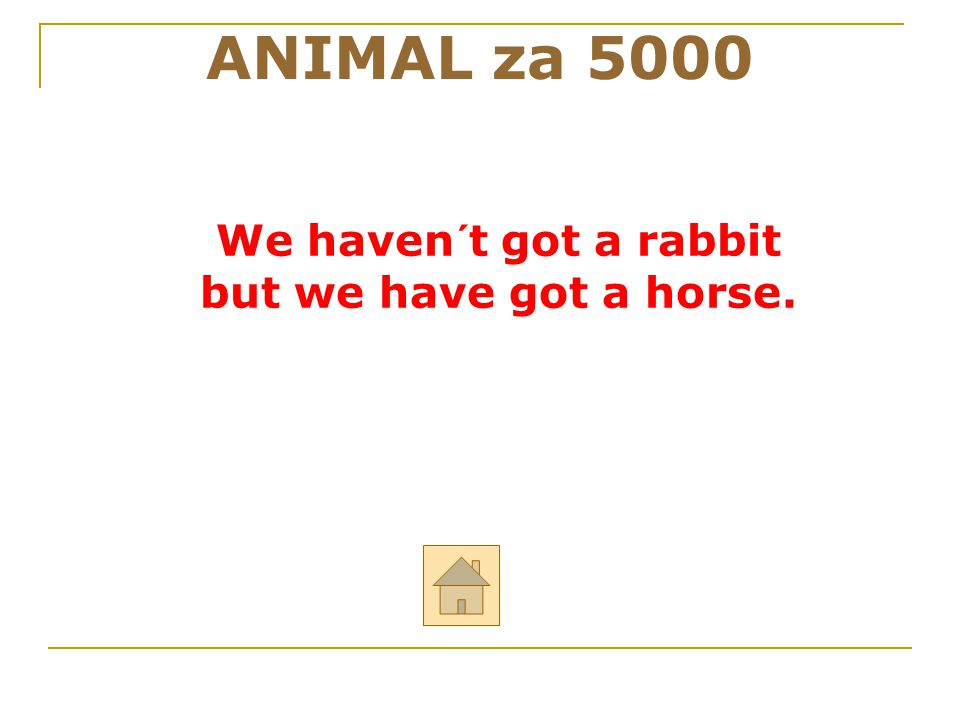 ANIMAL za 5000 We haven´t got a rabbit but we have got a horse. 32