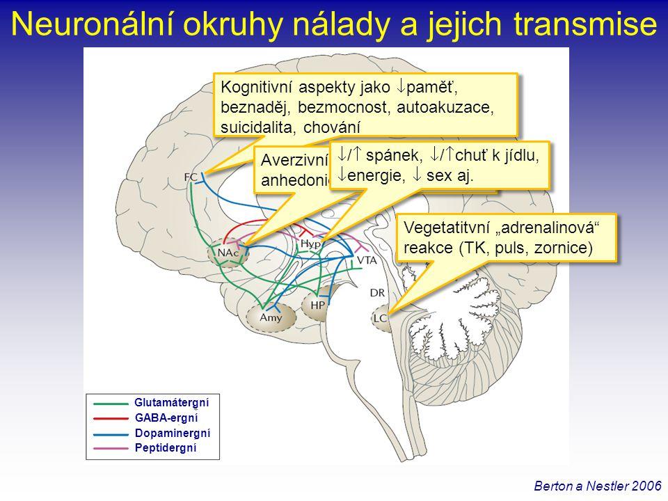Neuronální okruhy nálady a jejich transmise