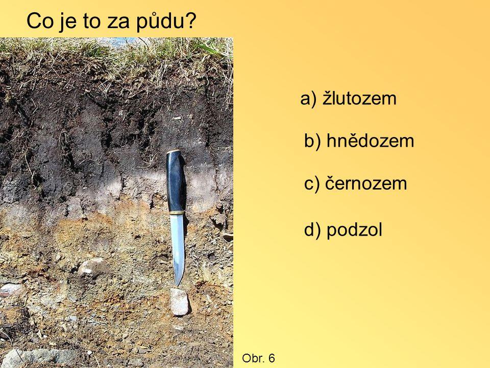 Co je to za půdu a) žlutozem b) hnědozem c) černozem d) podzol Obr. 6