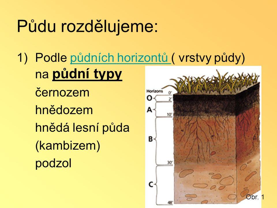 Půdu rozdělujeme: Podle půdních horizontů ( vrstvy půdy) na půdní typy
