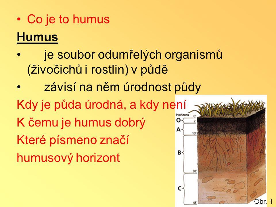 je soubor odumřelých organismů (živočichů i rostlin) v půdě