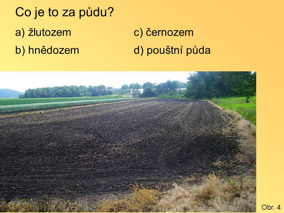 Co je to za půdu a) žlutozem c) černozem b) hnědozem d) pouštní půda