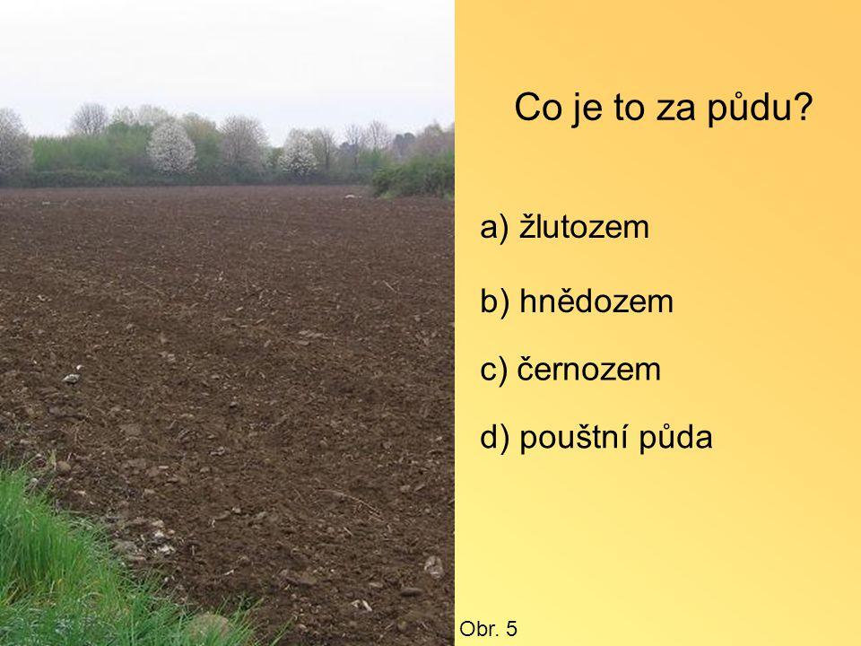 Co je to za půdu a) žlutozem b) hnědozem c) černozem d) pouštní půda