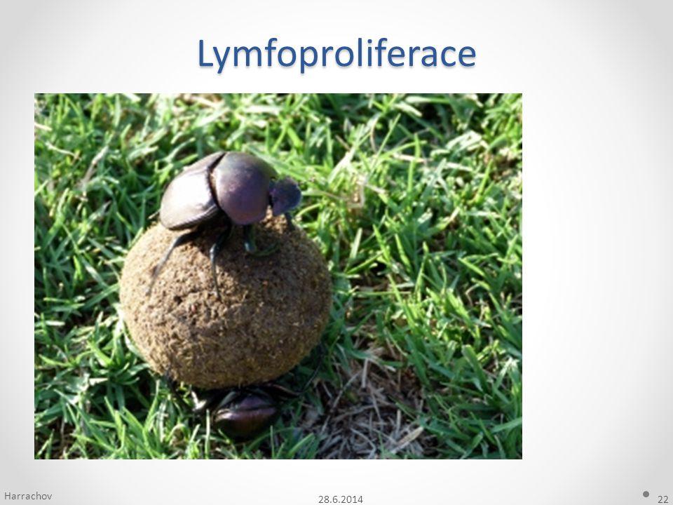 Lymfoproliferace Harrachov 3.4.2017