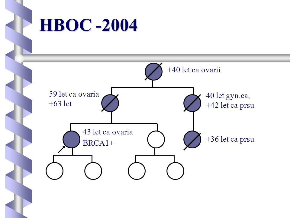 HBOC -2004 +40 let ca ovarií 59 let ca ovaria 40 let gyn.ca, +63 let