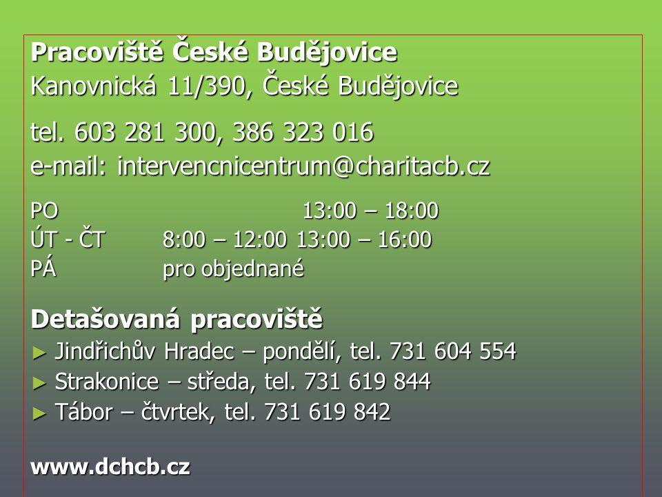 Pracoviště České Budějovice Kanovnická 11/390, České Budějovice