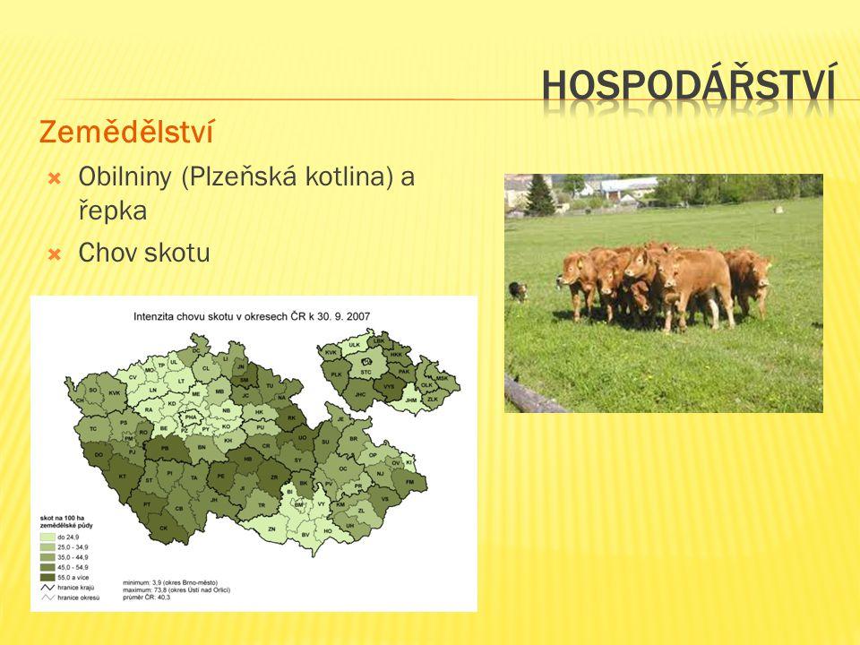 Hospodářství Zemědělství Obilniny (Plzeňská kotlina) a řepka