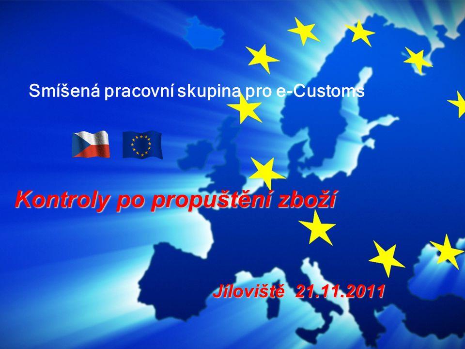 Smíšená pracovní skupina pro e-Customs