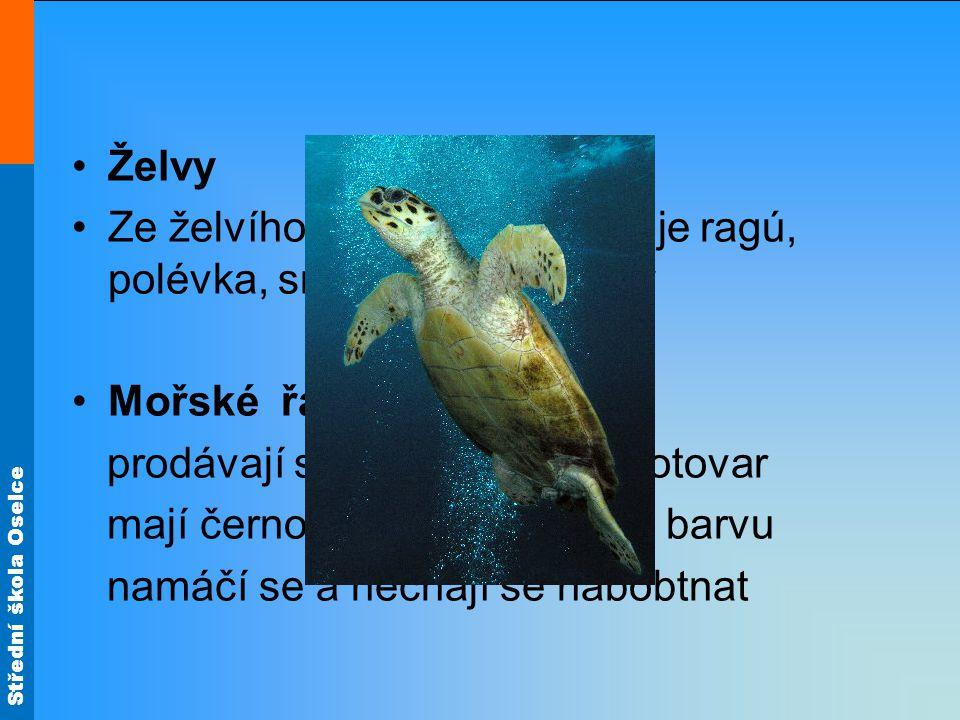 Želvy Ze želvího masa se připravuje ragú, polévka, smažené želví nohy. Mořské řasy. prodávají se sušené jako polotovar.