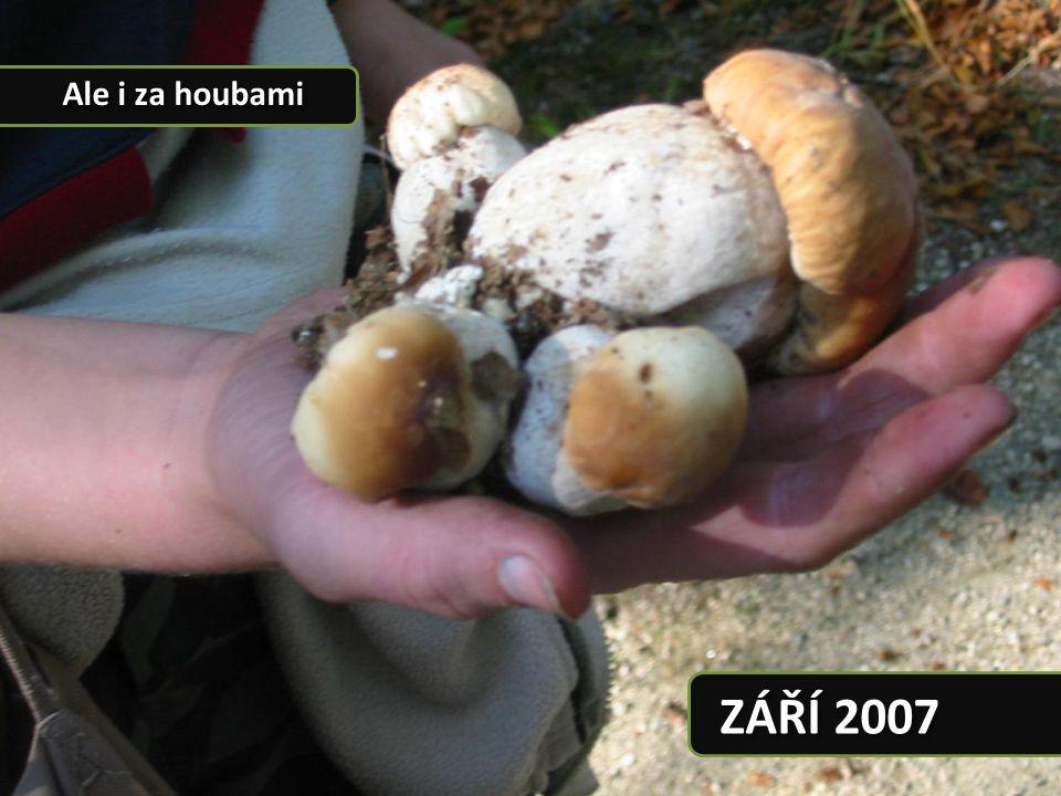 Ale i za houbami ZÁŘÍ 2007