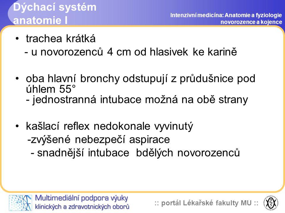 Dýchací systém anatomie I