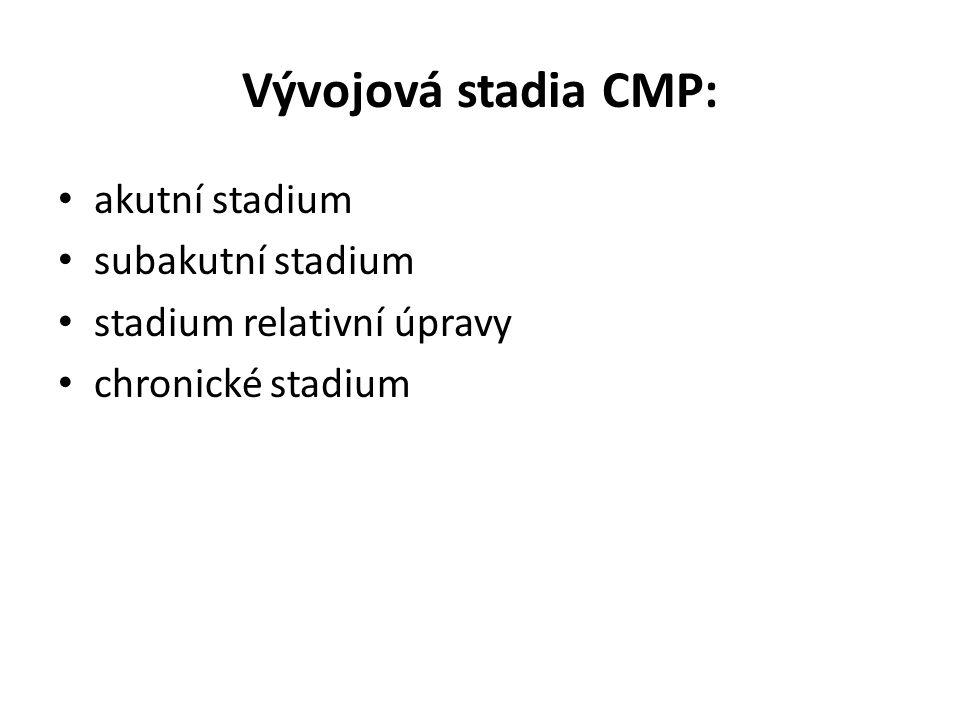 Vývojová stadia CMP: akutní stadium subakutní stadium