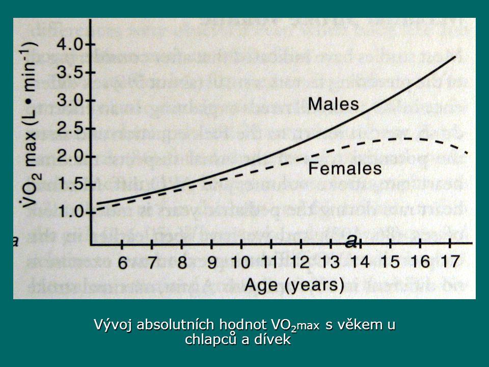 Vývoj absolutních hodnot VO2max s věkem u chlapců a dívek