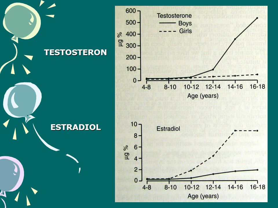 TESTOSTERON ESTRADIOL