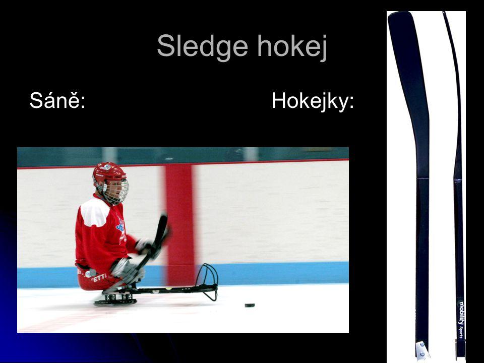 Sledge hokej Sáně: Hokejky: